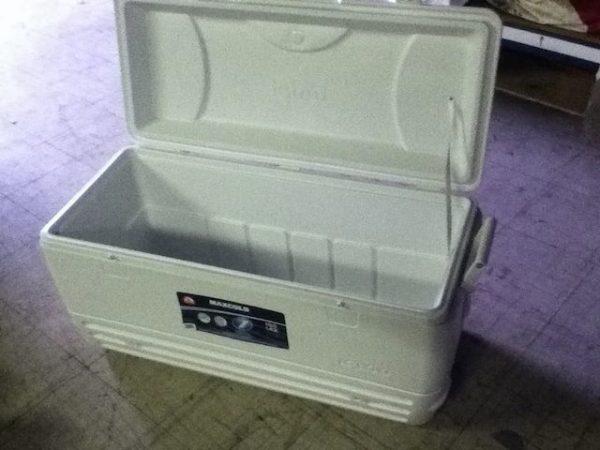 Large Cooler Rental